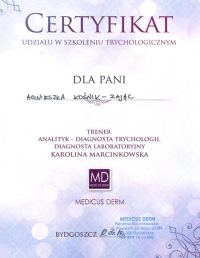 certyfikat_3